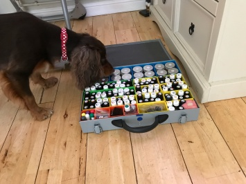 Rolo sniffing EOs box